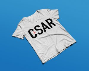 Gaetan Richard graphiste webdesigner 2018 projet club de plongée CSAR