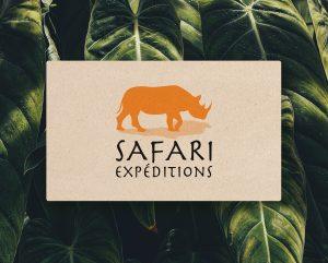 Gaetan Richard graphiste webdesigner 2018 projet agence de voyage safari expédition